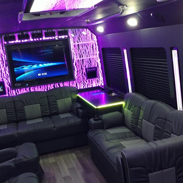 luxury coach 8